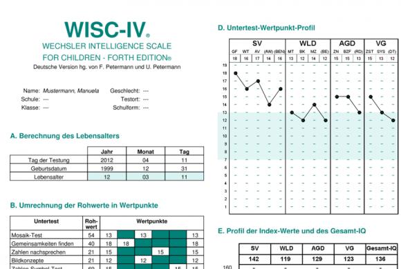 WİSC 4 Zeka ve Gelişim Testi